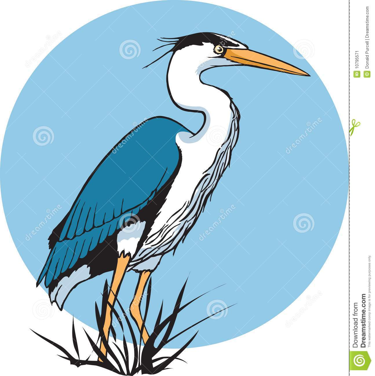 Blue Heron clipart #19, Download drawings