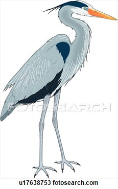 Blue Heron clipart #15, Download drawings