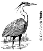 Blue Heron clipart #18, Download drawings
