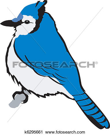 Blue Jay clipart #2, Download drawings