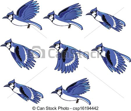 Blue Jay clipart #4, Download drawings
