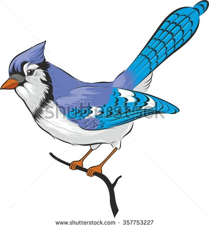 Blue Jay clipart #3, Download drawings