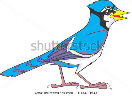 Blue Jay clipart #9, Download drawings