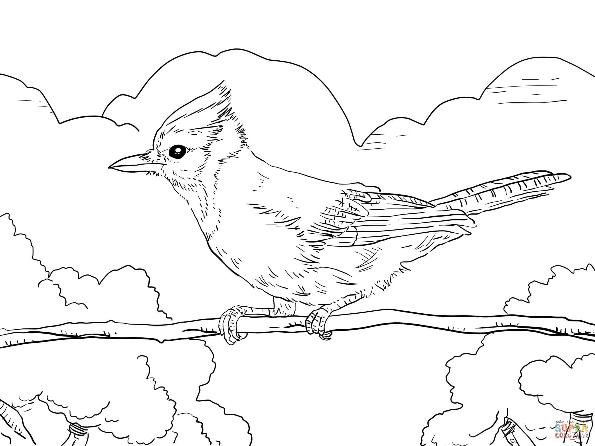Green Jay coloring #16, Download drawings