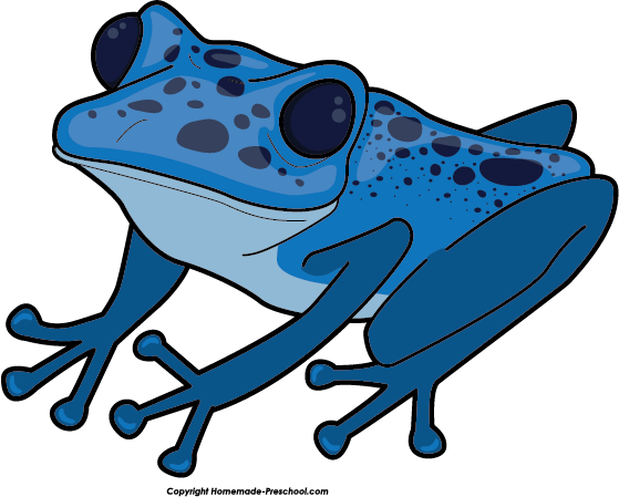 Blue Poison Dart Frog clipart #20, Download drawings