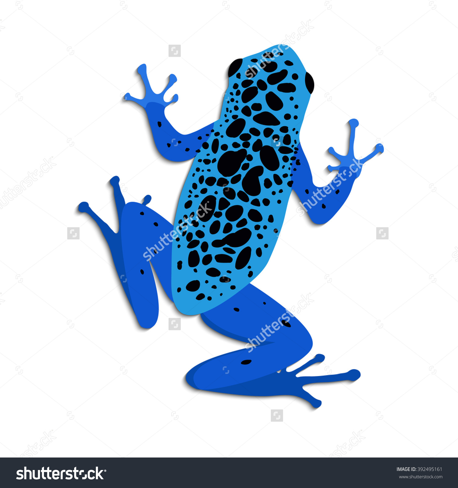 Blue Poison Dart Frog clipart #2, Download drawings