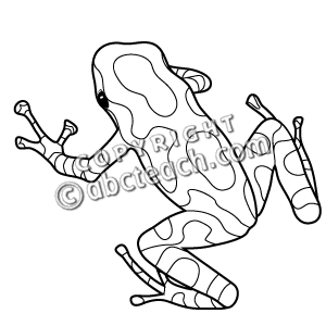 Blue Poison Dart Frog clipart #9, Download drawings