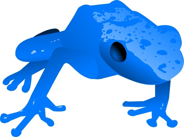Golden Poison Frog svg #19, Download drawings
