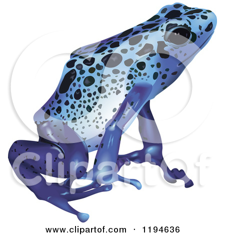 Blue Poison Dart Frog clipart #10, Download drawings