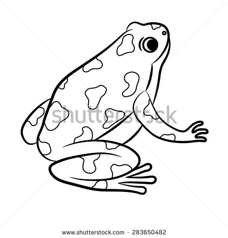 poison dart frog coloring pages | Blue Poison Dart Frog coloring, Download Blue Poison Dart ...