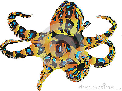 Blue Ringed Octopus clipart #14, Download drawings