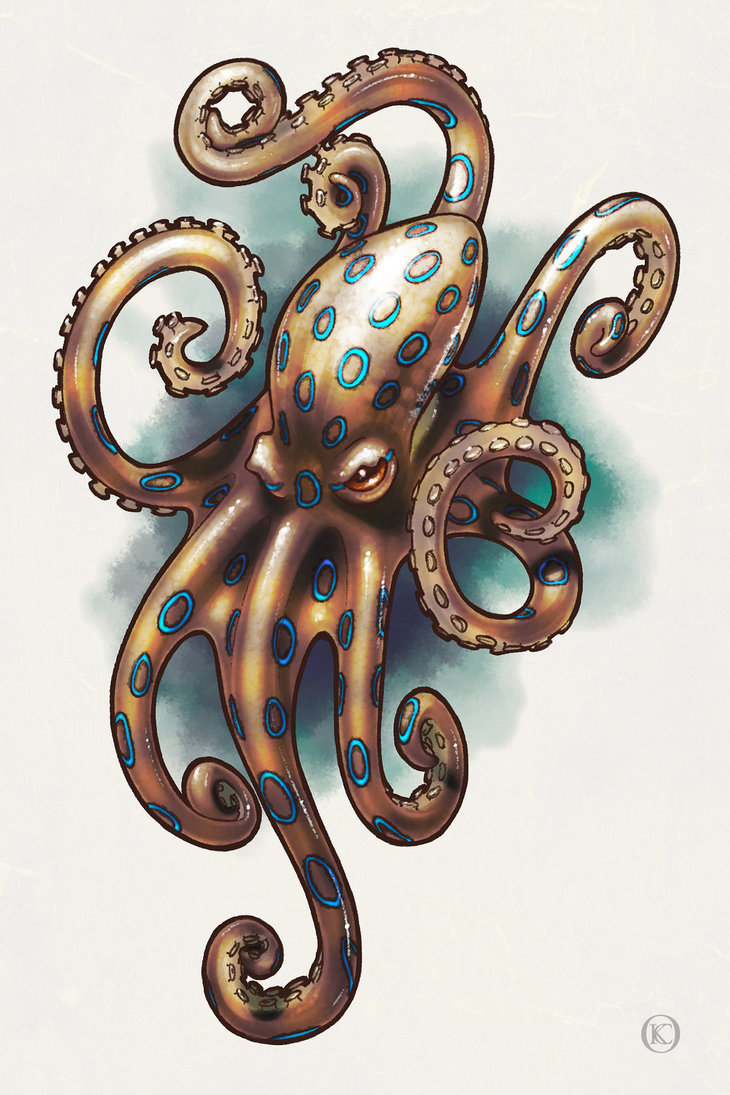 Blue Ringed Octopus svg #19, Download drawings