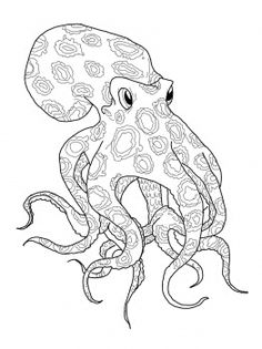 Blue Ringed Octopus svg #13, Download drawings