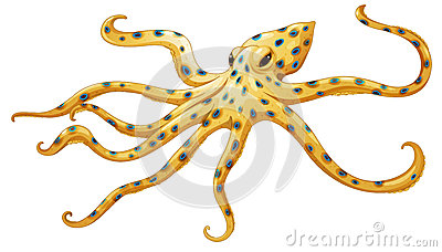 Blue Ringed Octopus svg #17, Download drawings