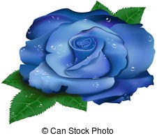 Blue Rose clipart #18, Download drawings