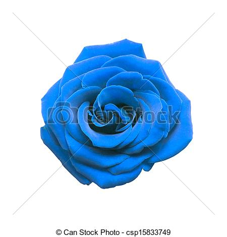 Blue Rose clipart #12, Download drawings