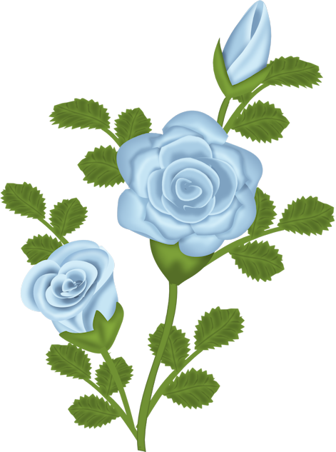 Blue Rose clipart #8, Download drawings