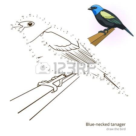Blue Tanager clipart #8, Download drawings