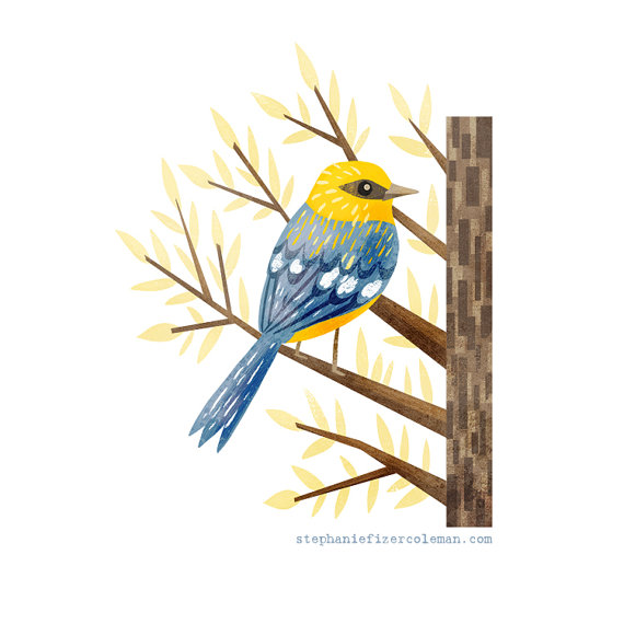 Eastern Tanager svg #18, Download drawings