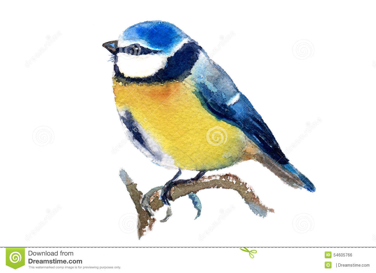 Blue Tit clipart #13, Download drawings