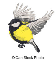 Blue Tit clipart #12, Download drawings