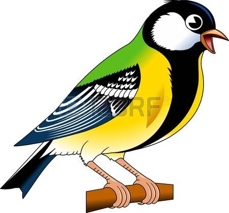 Blue Tit clipart #8, Download drawings