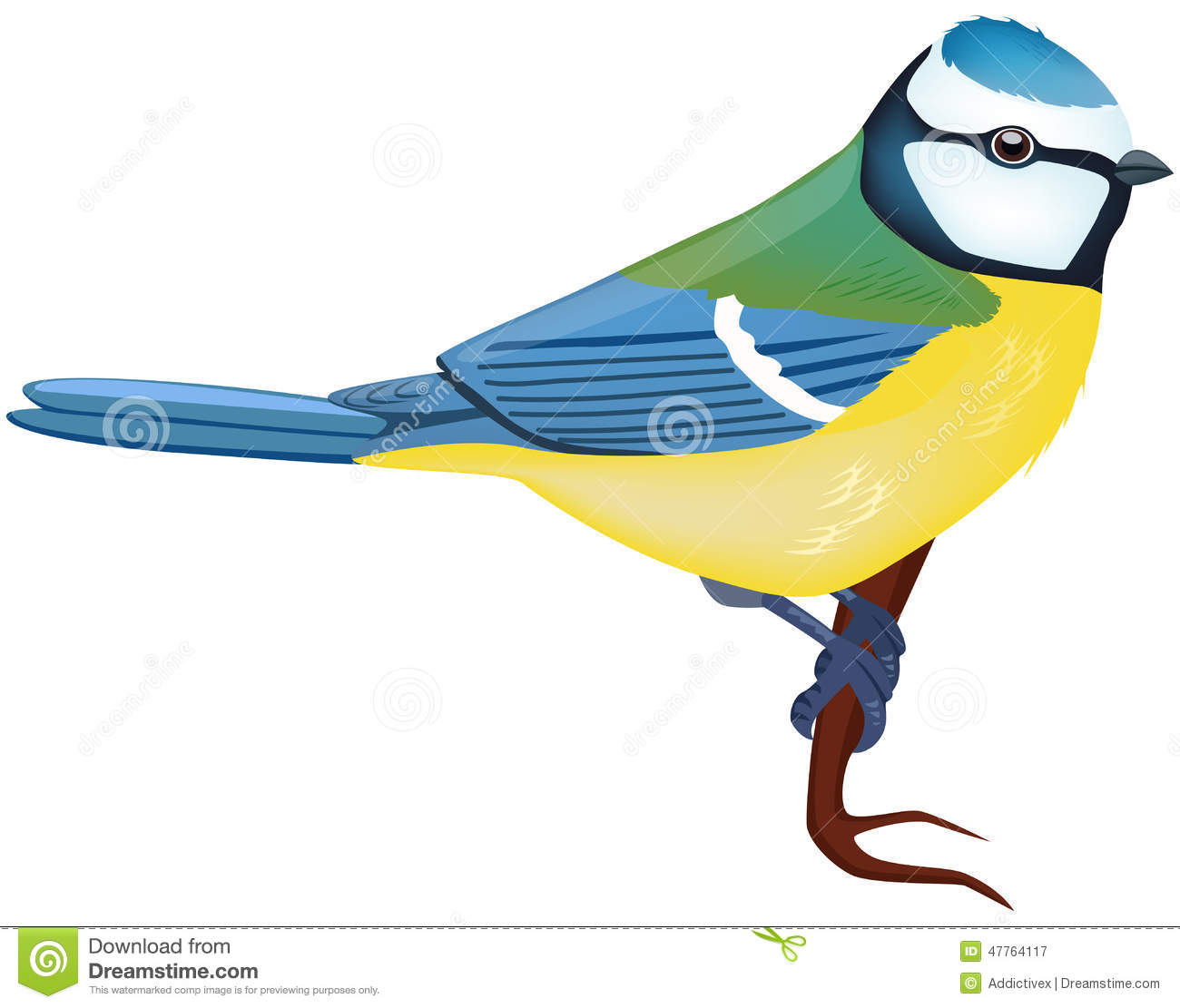 Blue Tit clipart #18, Download drawings