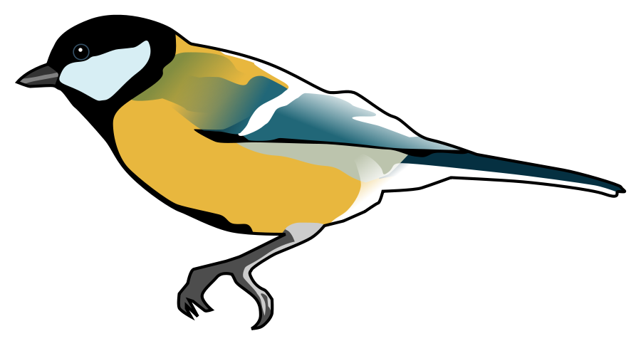 Blue Tit clipart #19, Download drawings