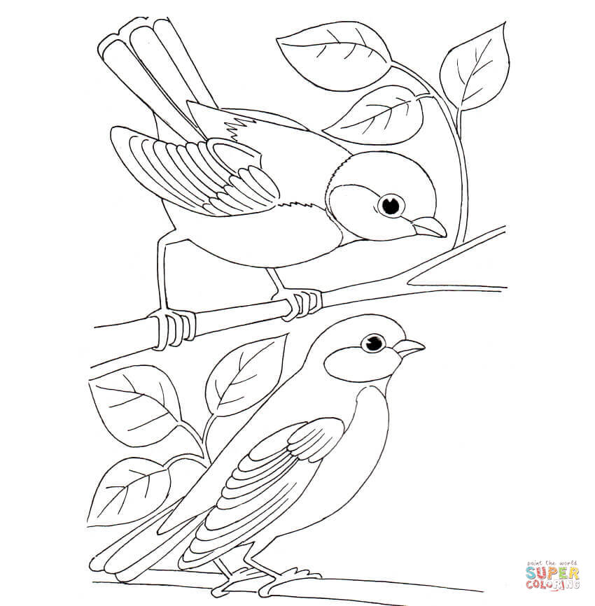Blue Tit coloring #4, Download drawings