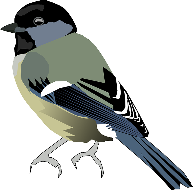 Titmouse svg #13, Download drawings