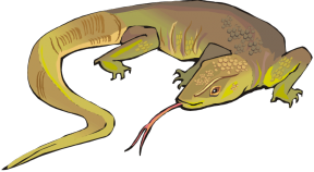 Blue-Tongue Skink clipart #5, Download drawings