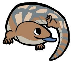 Blue Tongue Lizard clipart #20, Download drawings