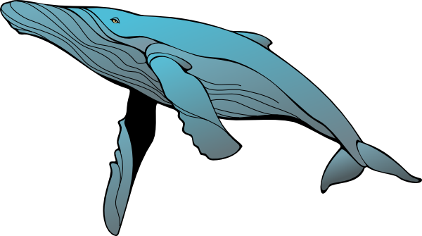 Blue Whale clipart #5, Download drawings