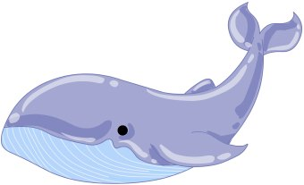 Humpback Whale clipart #17, Download drawings