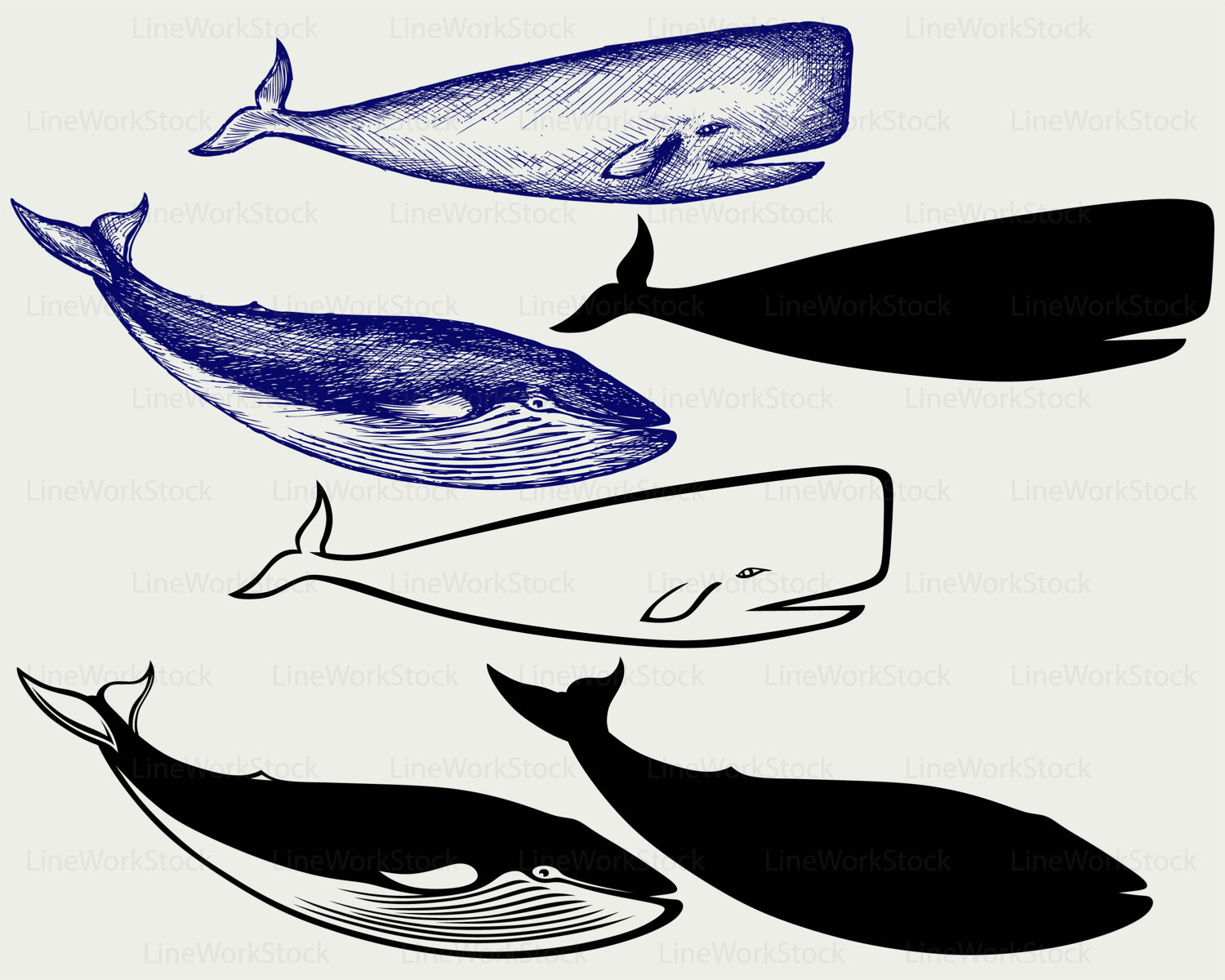 Blue Whale svg #1, Download drawings