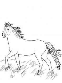 Blue Wildebeest coloring #15, Download drawings