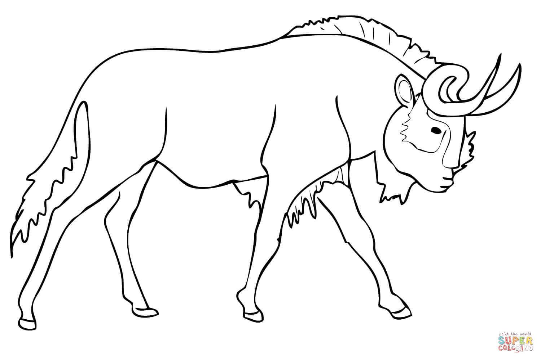 Blue Wildebeest coloring #5, Download drawings