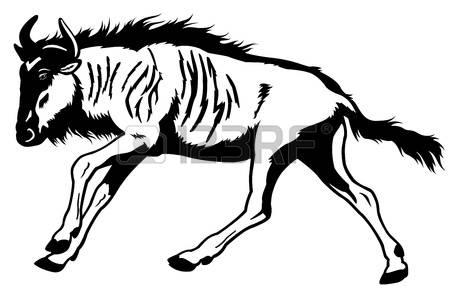Blue Wildebeest coloring #8, Download drawings