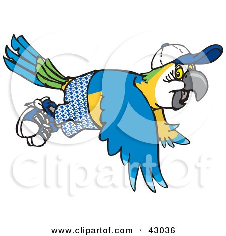 Blue-and-yellow Macaw clipart #11, Download drawings