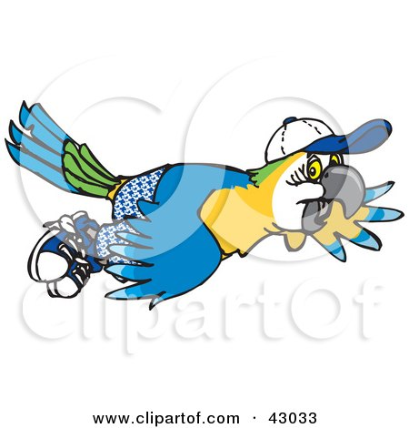 Blue-and-yellow Macaw clipart #9, Download drawings