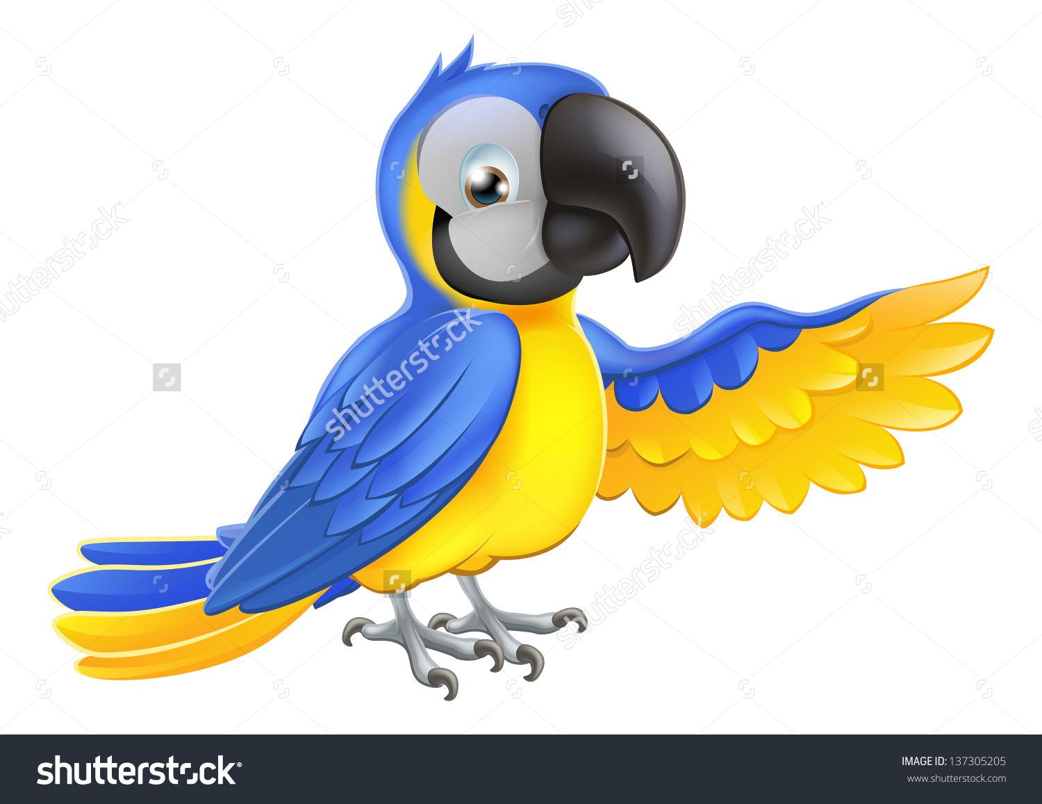 Blue-and-yellow Macaw clipart #6, Download drawings