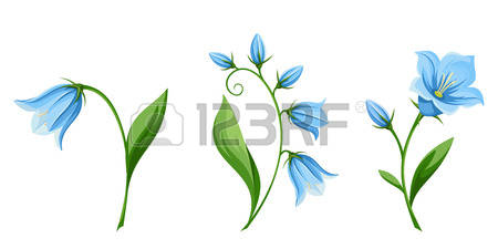 Bluebell clipart #10, Download drawings