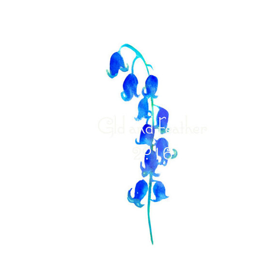 Bluebell clipart #6, Download drawings