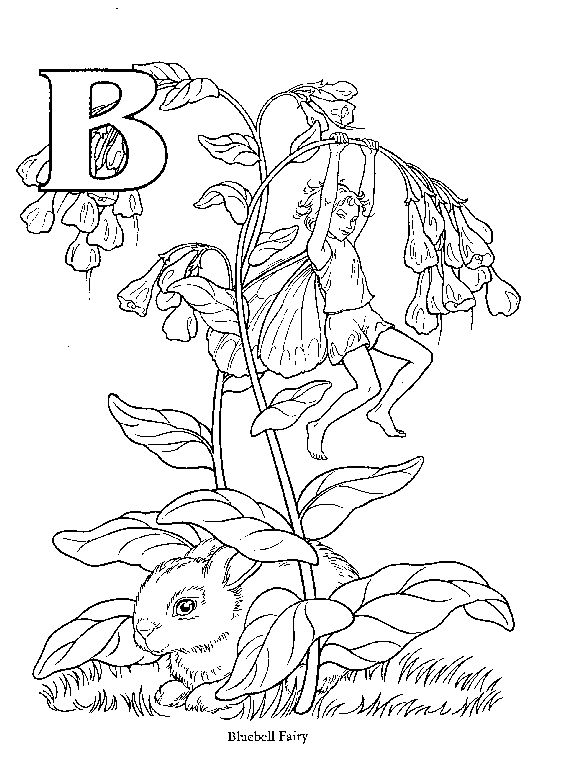 Bluebell coloring #11, Download drawings