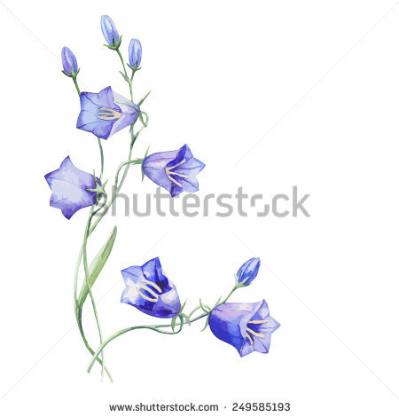 Bluebell svg #3, Download drawings