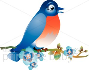 Bluebird clipart #10, Download drawings
