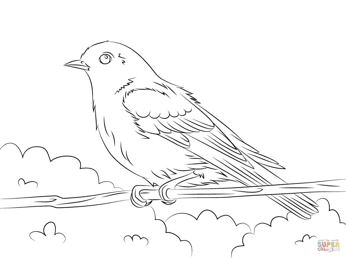 Eastern Bluebird coloring #12, Download drawings