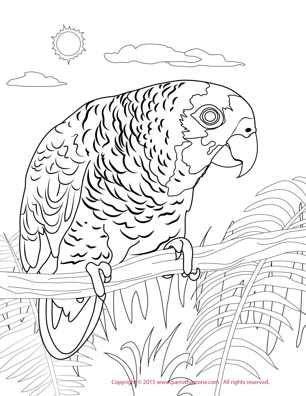 Blue-fronted Amazon coloring #17, Download drawings