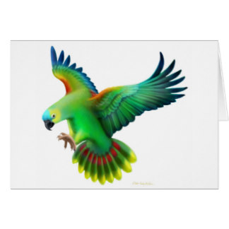 Blue-fronted Parrot clipart #13, Download drawings