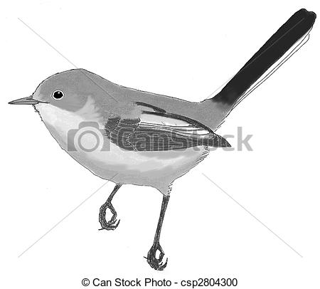 Blue-gray Gnatcatcher clipart #20, Download drawings